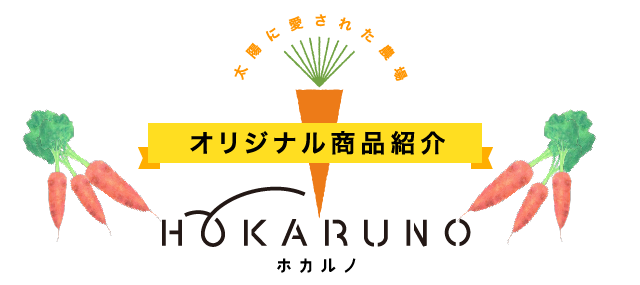 オリジナル商品紹介ホカルノ